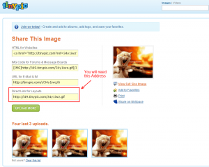 How to use animated gif in your facebook