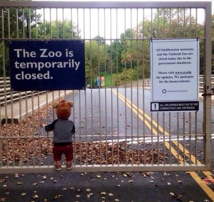 "Dubbed the ""defining image of the shutdown,"" this picture brought some humanity and heart to a bureaucratic nightmare, all thanks to one kid in a bear costume being locked out of the National Zoo. Initially posted on Reddit, the photo quickly spread to Twitter and various media outlets, fueling the ongoing outrage over the widespread effects, both big and small, of the shutdown. (Reddit)"